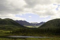 Montagne sceniche dell'Alaska Fotografia Stock