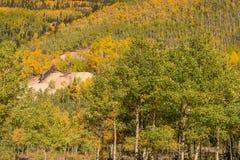 Montagne scénique du Colorado dans l'automne Photo libre de droits