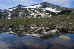 Montagne se reflétant dans l'étang Image libre de droits