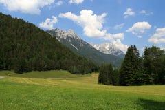 Montagne selvagge di Kaiser Fotografie Stock Libere da Diritti