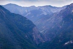 Montagne in Siberia orientale Immagine Stock Libera da Diritti