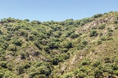 Montagne située à Cadix Images stock