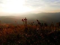 Montagne slovacche di Tatra Fotografie Stock Libere da Diritti