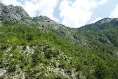 Montagne slovene fotografie stock libere da diritti