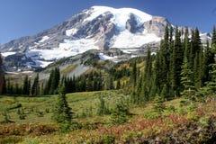 Montagne Snow-covered Photo libre de droits