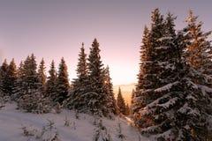 montagne in soli di inverno fotografie stock libere da diritti