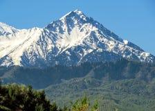 Montagne sopra Almaty Fotografie Stock Libere da Diritti