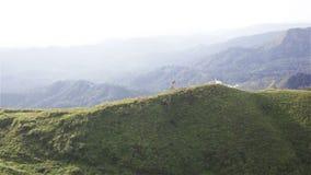Montagne sotto foschia di mattina a Nern Chang Suek, parco nazionale di Pha Phum della cinghia, provincia di Kanchanaburi, Tailan archivi video