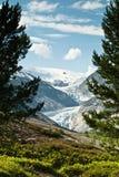Montagne spectaculaire Photo libre de droits
