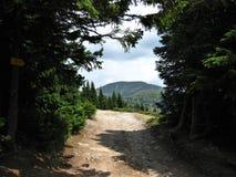 Montagne Stara Planina, Bulgarie L'amour de la nature et de sa conservation est amène un type d'un petit Photos stock