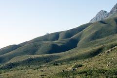 Montagne Stellenbosch Sudafrica di Jonkershoek immagini stock