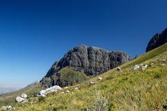 Montagne Sudafrica di Jonkershoek fotografia stock libera da diritti