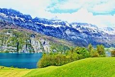 Montagne Svizzera delle alpi del lago Walensee Fotografia Stock