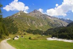Montagne svizzere Stock Image