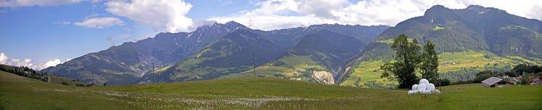 Montagne svizzere panoramiche Immagine Stock Libera da Diritti