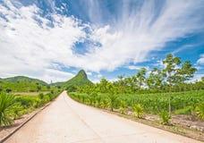 Montagne in Tailandia Immagini Stock