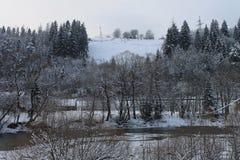 Montagne, un fiume della montagna nell'inverno Fotografia Stock