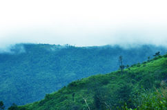 Montagne in una nebbia. Tinta blu. Fotografie Stock Libere da Diritti
