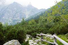 Montagne, una valle di cinque laghi, Polonia, Zakopane Fotografia Stock Libera da Diritti