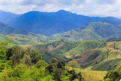 Montagne verdi Immagini Stock Libere da Diritti