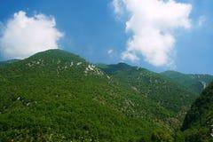 Montagne verdi Immagine Stock