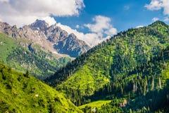 Montagne verdi con cielo blu e le nuvole Immagini Stock Libere da Diritti