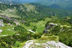 Montagne verdi vibranti Fotografia Stock