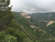 Montagne verte Photographie stock libre de droits