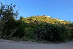 Montagne verte photo libre de droits