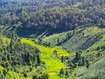Montagne verte avec le ciel bleu Photo libre de droits