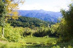 Montagne verte de ciel photos stock