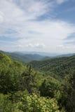 Montagne verte de couverture d'arbres Photos libres de droits