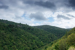 Montagne verte de forêt à l'été nuageux Horizontal de nature Photo libre de droits