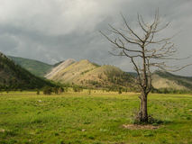 Montagne vicino al lago Baikal Fotografia Stock