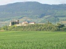 Montagne, vigne e case Immagine Stock Libera da Diritti