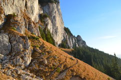 Montagnes à l'aube dans les Carpathiens orientaux, réservation naturelle de Piatra Craiului, Roumanie Photographie stock libre de droits