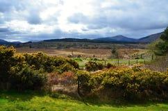 Montagnes écossaises donnant sur la campagne images libres de droits