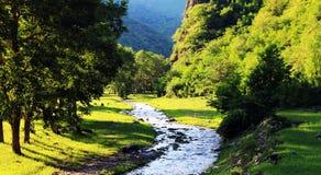 montagnes élevées et écoulement de l'eau Image stock