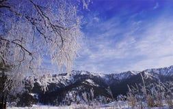 Montagnes 1 d'Altai Photo stock