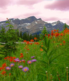 Montagnes 2 de Banff Photos libres de droits