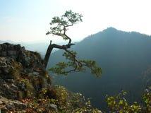 Montagnes Images libres de droits