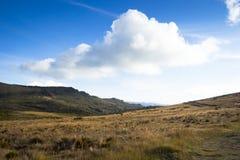 Montagnes andines Photos libres de droits