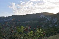 Montagnes avec la lumière de soirée Images stock