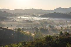 Montagnes avec les arbres et le brouillard photographie stock libre de droits