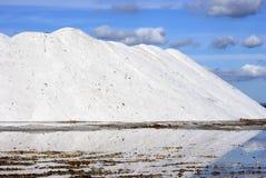 Montagnes blanches dans des étangs de sel Photographie stock libre de droits