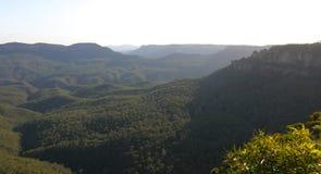 Montagnes bleues. l'Australie. Photographie stock libre de droits
