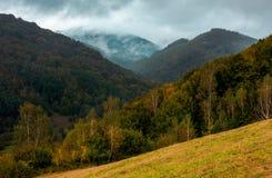 Montagnes boisées en automne photographie stock