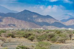 Montagnes brumeuses avec quelques arbres dans le désert rocheux de la partie nord des Emirats Arabes Unis photo libre de droits