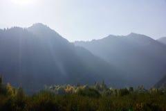 Montagnes brumeuses en automne Images stock