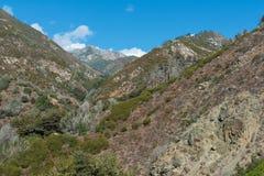 Montagnes côtières centrales images stock